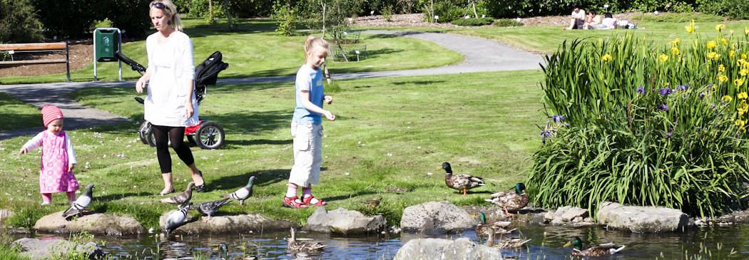 Laugardalur Grasagarður Reykjavíkur – Park und Botanischer Garten
