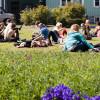 Sumardagurinn fyrsti – Der erste Sommertag