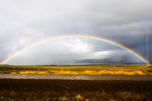 Regenbogen in Südisland, ©Sabine Burger, Alexander Schwarz, Island - Iceland 2009 09 10