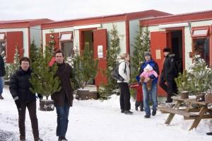 Beim Weihnachtsbäumchenkauf, ©Sabine Burger, Alexander Schwarz, IMG_0885__2009-11-29_16-24-13_aA