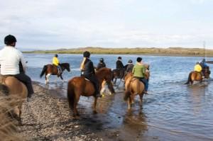 Stunden-, Tages- und Wochenreittouren werden in ganz Island angeboten. ©Sabine Burger, Alexander Schwarz, IMG_4906__2009-07-11_18-59-16_aA