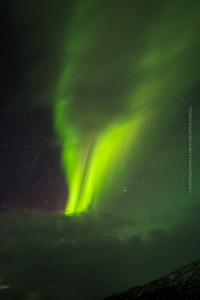 Immer in Bewegung, die Aurora borealis, ©Sabine Burger, Alexander Schwarz, L1000280